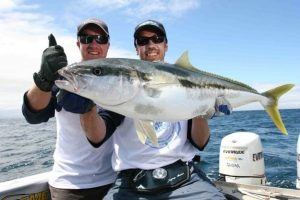 sport fishing new zealand